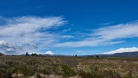 Campo idílico em Nova Zelândia Foto de Stock Royalty Free