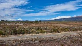 Campo idílico em Nova Zelândia Fotos de Stock Royalty Free