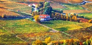 Campo ilustrado y viñedos hermosos de Piemonte en aut foto de archivo