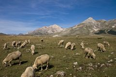 Campo Imperatore Royalty Free Stock Images