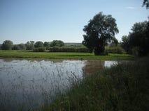 Campo innaffiato tramite irrigazione a scorrimento Immagini Stock Libere da Diritti