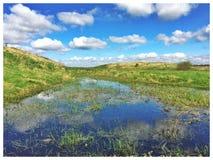 Campo inundado Fotos de archivo