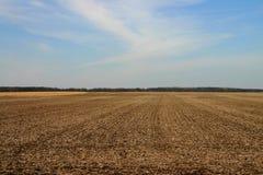 Campo in inverno tardo fotografia stock libera da diritti