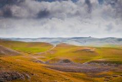 Campo iraquí del paisaje en primavera Fotografía de archivo libre de regalías