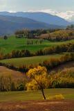 Campo italiano Fotografía de archivo libre de regalías
