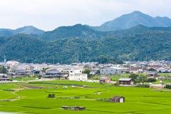 Campo japonês Foto de Stock Royalty Free