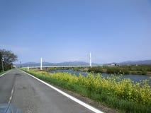 Campo japonês Imagem de Stock Royalty Free