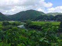 Campo japonês típico da área de Nakatosa na ilha de Shinkoku, Japão fotografia de stock