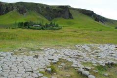 Campo in Kirkjubaejarklaustur, Islanda Fotografia Stock Libera da Diritti