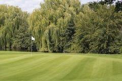 Campo limpo verde do golfe com a uma bandeira branca Imagem de Stock Royalty Free