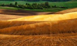Campo linea collinosa pittoresca Fotografie Stock Libere da Diritti