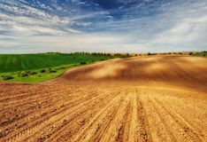 Campo linea collinosa pittoresca Fotografia Stock Libera da Diritti