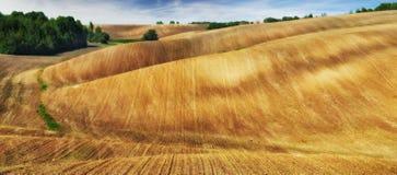 Campo linea collinosa pittoresca Fotografie Stock