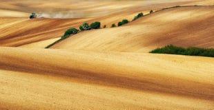 Campo linea collinosa pittoresca Immagine Stock Libera da Diritti
