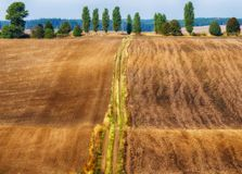 Campo linea collinosa pittoresca Immagini Stock Libere da Diritti