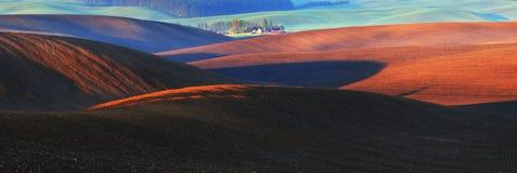 Campo linea collinosa pittoresca Immagini Stock