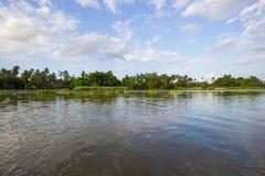 Campo a lo largo del riverMaenam Tha Chin, Nakhon Pathom, Tailandia de Tha Chin Imágenes de archivo libres de regalías