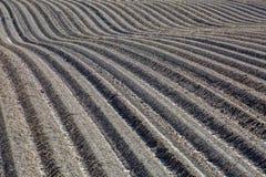 Campo marrón del suelo del fango de la agricultura en una inundación del agua Foto de archivo libre de regalías