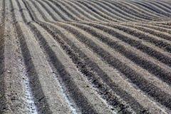 Campo marrón del suelo del fango de la agricultura en una inundación del agua Fotos de archivo