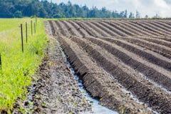 Campo marrón del suelo del fango de la agricultura en una inundación del agua Fotos de archivo libres de regalías