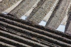 Campo marrón del suelo del fango de la agricultura en una inundación del agua Imagenes de archivo