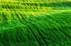 Campo campo montañoso pintoresco Campo agrícola en resorte Imágenes de archivo libres de regalías