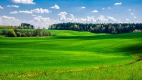 campo montanhoso agrícola do verão coberto com a grama verde sob um céu nebuloso azul foto de stock royalty free