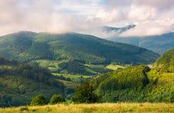 Campo montanhoso bonito no outono imagens de stock royalty free