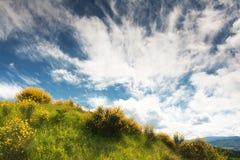 Campo montanhoso de le Marche, Italy Foto de Stock Royalty Free