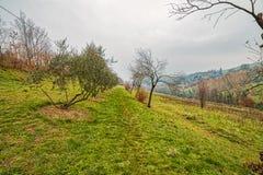 Campo montanhoso do inverno fotos de stock royalty free