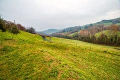 Campo montanhoso do inverno imagens de stock