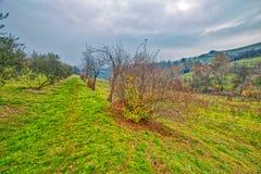 Campo montanhoso do inverno fotografia de stock royalty free