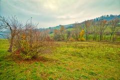 Campo montanhoso do inverno imagem de stock
