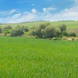 campo montanhoso e céu azul fotos de stock