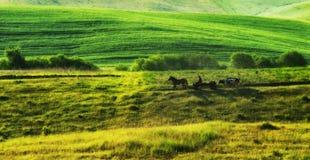 campo montanhoso pitoresco fotos de stock royalty free