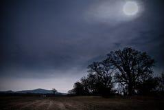 Campo Moonlit Imagens de Stock