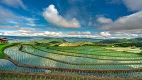 Campo Mountain View del arroz de la cabaña fotografía de archivo libre de regalías