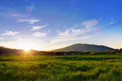 Campo nas montanhas no por do sol Imagens de Stock Royalty Free