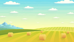 Campo natural do feno da paisagem Fotografia de Stock