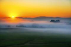 Campo natural y niebla del té verde Imagen de archivo