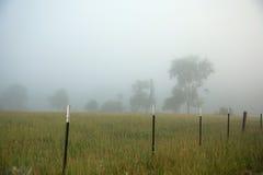 Campo nebbioso fotografia stock