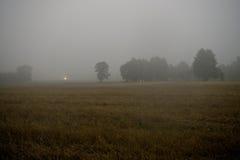 Campo nebbioso di mattina Fotografia Stock Libera da Diritti