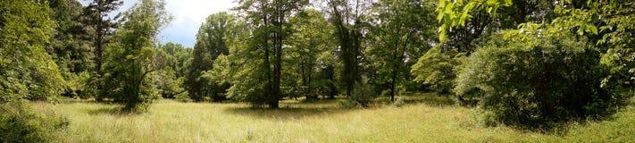 Campo nella Virginia del Nord--panorama Fotografia Stock