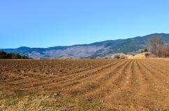 Campo nelle montagne Fotografia Stock