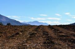 Campo nelle montagne Immagini Stock