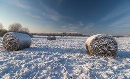 Campo nevado Imágenes de archivo libres de regalías