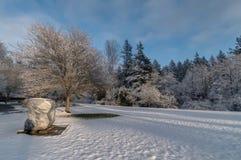 Campo nevado Imagens de Stock Royalty Free