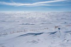 Campo nevado extenso en Saskatchewan con la hierba que empuja fuera de snowbank imagenes de archivo