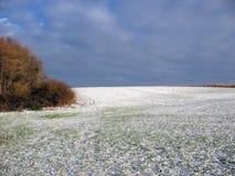 Campo nevicato durante l'inverno Immagini Stock