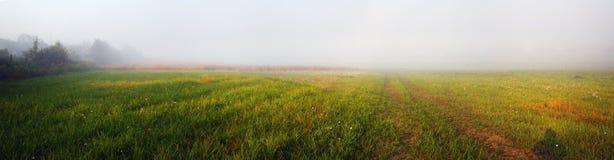 Campo nevoento na manhã imagens de stock